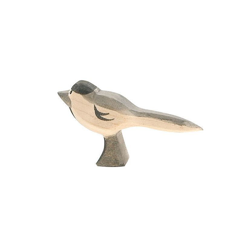 Pájaro Aguzanieves - Ostheimer